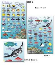 Waterproof Fish ID Card - Hawaii