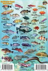 Waterproof Fish ID Card - Northwest Coast