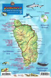 Waterproof Fish ID Card - Dominica
