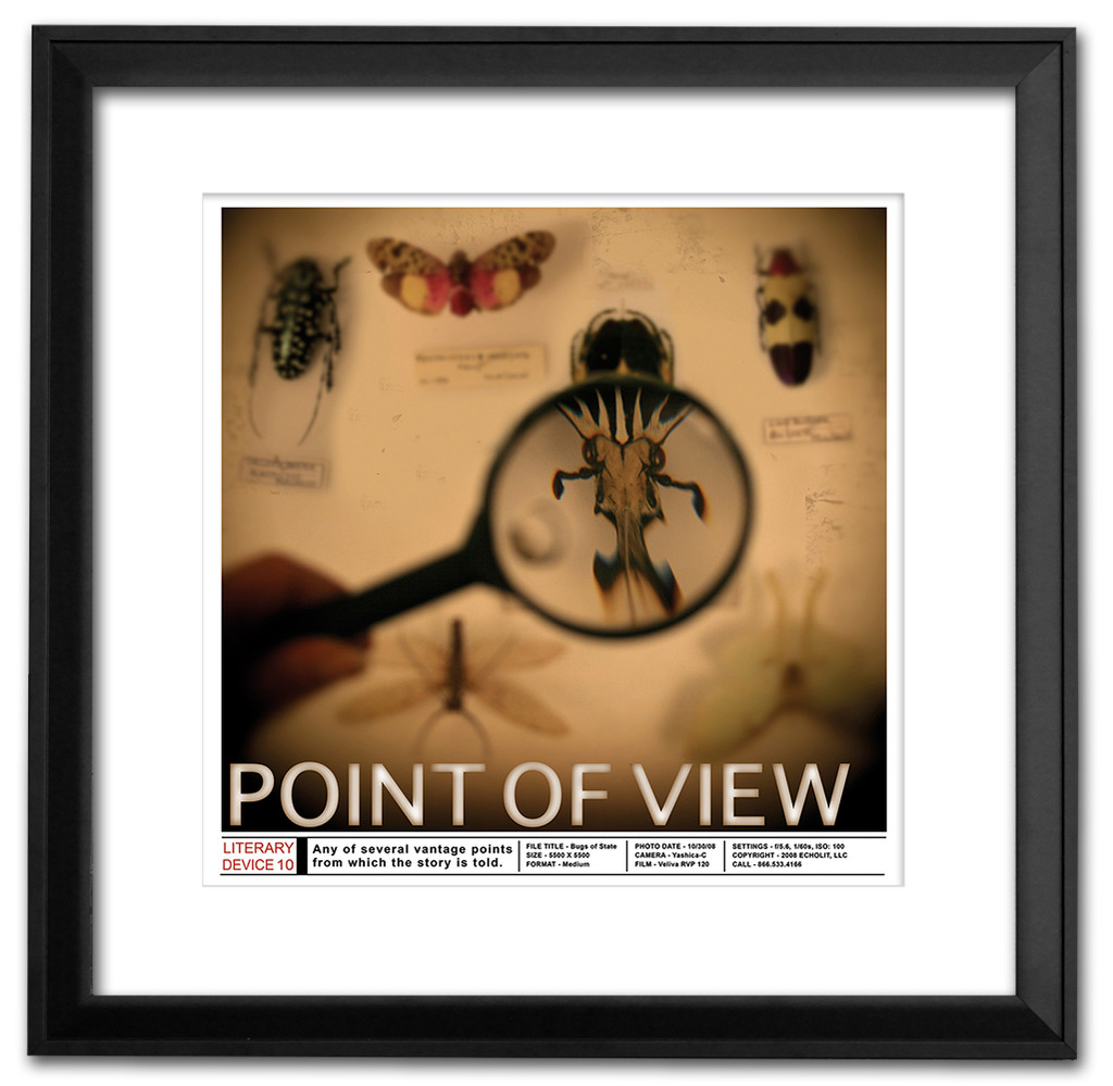 Point of View Classoom Literary Poster