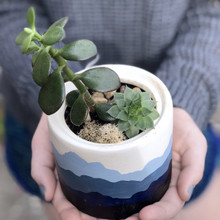 Mountain Range Hand Painted Succulent Planter