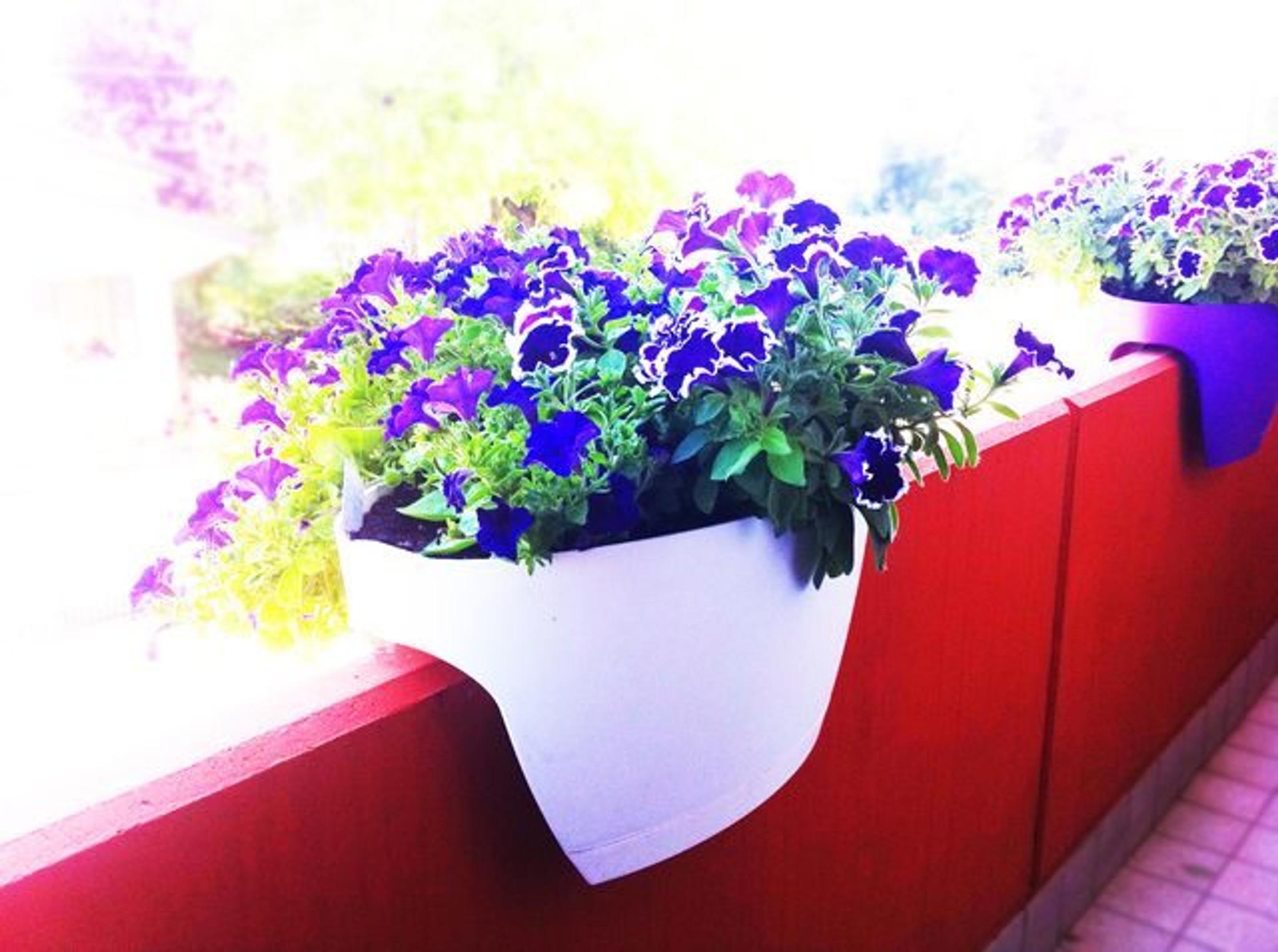 White extra large Greenbo planter on balcony.