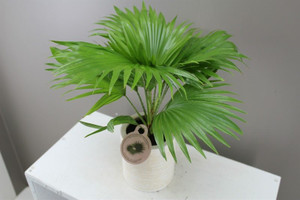 Footstool Palm gift