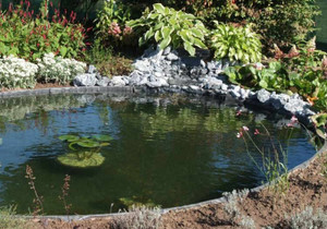 Plastic Pond Edging