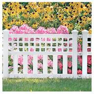 20-1/2x24 Wht Fence