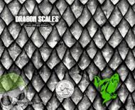 Dragon Scales BDDS Dragon Top Quality Skin Big Dawg Hydrographics UK Hydrographics Film Dip Film for Sale Buy Big Brain Graphics Yeti White Base Quarter Reference