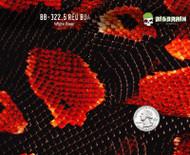 Red Boa SnakeSkin - 322.5 (50 CM)