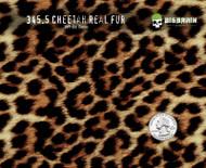 Cheetah Leopard Real Fur Animal Skin Big Brain Graphics Trusted Seller Buy Hydrographics Film USA Pattern