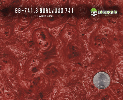 Burlwood 741 Hydrographics Pattern Film Buy Dipping Big Brain Graphics Seller White Base Quarter Reference