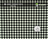 Houndstooth Black White Hydrographics Pattern Film Big Brain Graphics White Base Quarter Reference