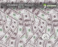 $100 Bills Big Faces Hundred Dollar Bills Hydrographics Big Brain Graphics Film White Base Quarter Reference