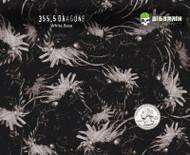 Dragon Dragons Japanese Fantasy Hydrographics Film Big Brain Graphics White Base Quarter Reference