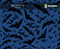 Bat Cave Gotham City Batman Bats Hydrographics Pattern Film Big Brain Graphics Trusted USA Seller Blue Base