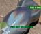 Holographic Color Shift Chameleon Paint Colorful Rainbow Pixie Dust Unicorn Dust Big Brain Coatings Big Brain Graphics Single Stage Paint Base Coat Clear Coat Sunshine Color 1