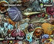 Seashell Life Abstract Abstraction Beach Life Sea (SH1) Big Brain Graphics Custom Printed Film Hydrographics Film Supplier