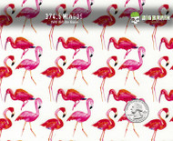 Flamingos Mingos Tropical Bird Pink Birds Hydrographic Film For Sale Hydrographics Dip Pattern Big Brain Graphics USA Seller Yeti White Base Quarter Reference