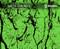 Black Marble 2 Stone Granite Detailed Black Clear Webbed Webbing Hydrographic Hydrographics Pattern Dip Pattern USA Seller Big Brain Graphics NanoChem Fluorescent Neon Green Paint Base