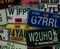 License Plates USA Lisense Lisence States Driving Hydrographic Hydrographics Pattern Dip Water Transfer Printing USA Seller Big Brain Graphics Galaxy Silver Base