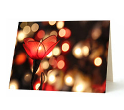 """Flower Light"" Card"