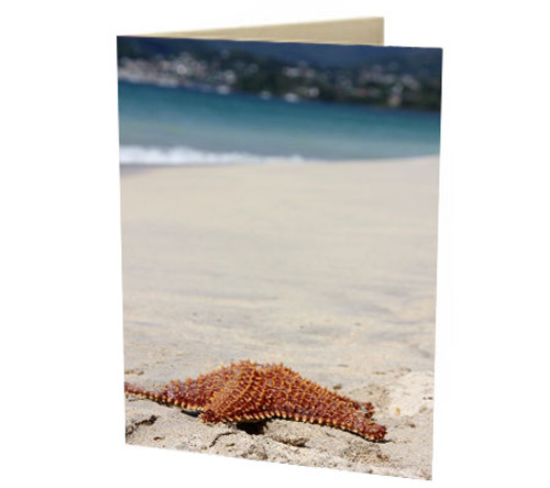 """Grenadian Starfish"" Card"