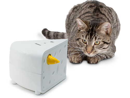 Automated Cat Toys : Frolicat cheese automatic cat toy
