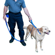 Dual Length Leash System Nylon Classic-Large 1 Inch Wide