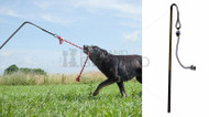Outdoor Interactive Dog Tug Toy-UBER