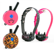 Lady Educator Remote Dog Trainer for Two Dogs