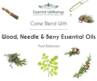 Wood, Needle & Berry Essential Oil Blending Class