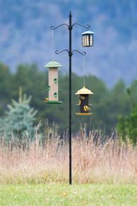Bird Feeder Station 4 Hook Design