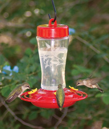 Etched Glass Hummingbird Feeder 12 oz