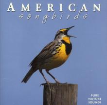 American Songbirds CD