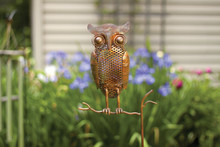 Owl Flamed Copper Staked