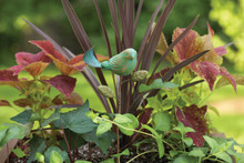Ceramic Bird Plant Pick Teal