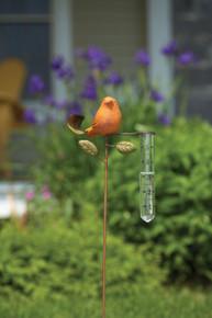 Bird Rain Gauge Spice