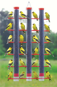 Finches Favorite, 3 Tube Feeder