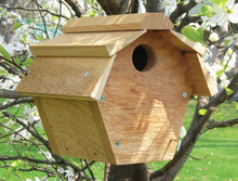 Carolina Wren House All Purpose