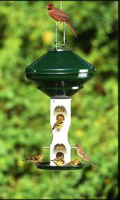 Mixed Seed 3 Gal w/o Cage w/o Pole