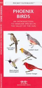Phoenix Birds