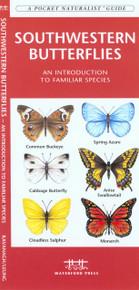 Southwestern Butterflies
