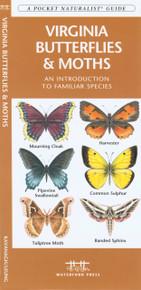 Virginia Butterflies and Moths