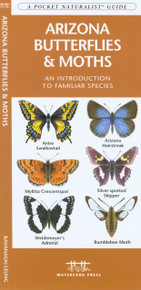 Arizona Butterflies and Moths