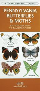 Pennsylvania Butterflies and Moths