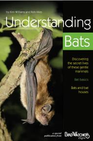 Understanding Bats