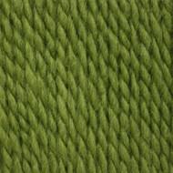Patons Leaf Green Shetland Chunky Yarn (5 - Bulky), Free Shipping at Yarn Canada