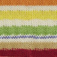 Patons Sporty Stripes Kroy Socks Yarn (1 - Super Fine), Free Shipping at Yarn Canada