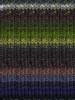 Noro #196 Green, Grey, Purple, Kureyon Yarn (4 - Medium)