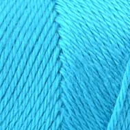 Caron Blue Mint Simply Soft Yarn (4 - Medium)