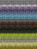 Noro #272 Greys, Lime, Brown Silk Garden Sock Yarn (1 - Super Fine)