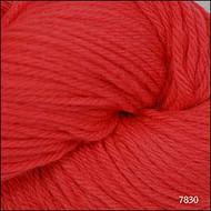 Cascade Coral 220 Solid Yarn (4 - Medium)